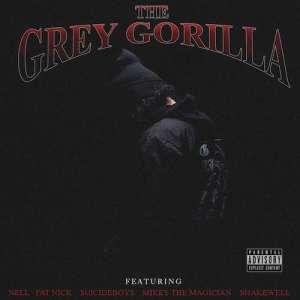 Grey Gorilla BY Ramirez